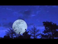 Microphones - The Moon