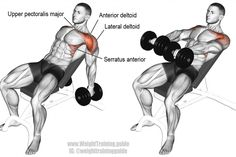 An isolation exercise. Note: Arms should be raised way above shoulder height. Synergistic muscles: Lateral Deltoid, Clavicular (Upper) Pectoralis Major, Serratus Anterior, and Middle and Lower Best Shoulder Workout, Best Chest Workout, Chest Workouts, Shoulder Exercises, Stomach Exercises, Weight Exercises, Weight Training, Training Exercises, Workout Routines