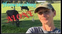 Homesteading ALONE~ - YouTube