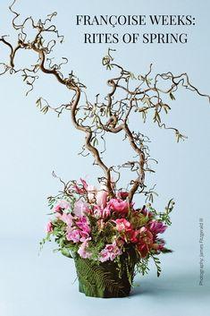 Portland, Oregon-based floral designer Françoise Weeks captures the magic of new growth in artful arrangements Spring Colors, Spring Flowers, Daffodils, Tulips, Spring Flower Arrangements, Spring Hats, Spring Photography, Light Dress, New Growth