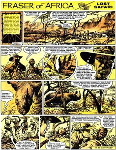 One of the full colour back panel life stories.