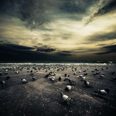 photos by Ibai Acevedo via Design You Trust