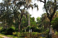 """Bonaventure Cemetery. Featured in and made more famous by """"Midnight in The Garden of Good and Evil"""" - Bonaventure Cemetery is an enormous burial ground located upon a scenic bluff above the Wilmington River"""