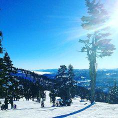 Bluebird weekend at @mountwashington -- lots of memories from this place the mountain of my youth! #skirebel #vancouverisland #skistoke #ski #explorebc #explorecanada #bluebird #powder #westcoast