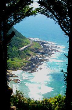 Oregon Coast. Cape Lookout