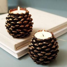 decoracion-con-pinas14 Rustic Candle Holders, Rustic Candles, Fall Candles, Diy Candles, Christmas Candles, Diy Candle Stand, House Candles, Ideas Candles, Candle Art