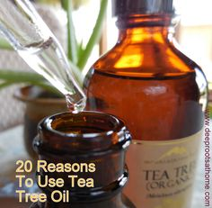 20 Reasons To Use Tea Tree Oil | Deep Roots at Home