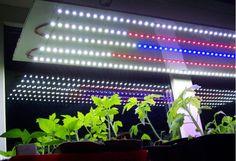 Времени до старта рассадного сезона все меньше и меньше. Я писала о фитолампах ( тут и тут ) и обещала рассказать, какие светодиодные светильники мы сделали сами и… Hydroponics, Blinds, Aquarium, Curtains, Garden, Home Decor, Sunroom Blinds, Aquarius, Insulated Curtains