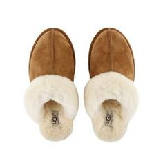 How to clean UGG boots: Keep your favorite UGG boots looking their best with UGG Sheepskin Cleaner and Conditioner. In 5 easy steps* your UGG Classics will be restored to their original look and feel. Ugg Style Boots, Bow Boots, Knit Boots, Shearling Boots, Leather Boots, Black Leather, Zara, Vegan Boots, Ugg Slippers
