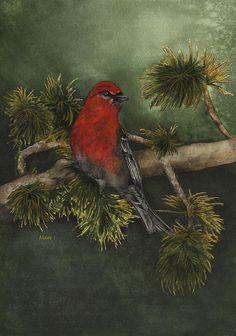 Pine Grossbeak watercolor Painting by Nan Wright  http://nan-wright.artistwebsites.com/featured/pine-grosbeak-nan-wright.html