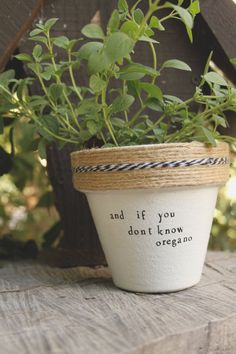 "4"" Notorious BIG ""Juicy"" » Oregano Herb Indoor and Outdoor Pot or Planter"