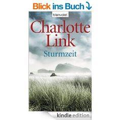 Sturmzeit: Roman