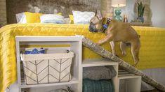 Sponsor content courtesy of Blue Buffalo® - Cat Accessories - Dog Ramp For Bed, Pet Ramp, Diy Dog Bed, Diy Bed, Cat Window Perch, Frozen Dog, Dog Steps, Smart Storage, Dog Storage
