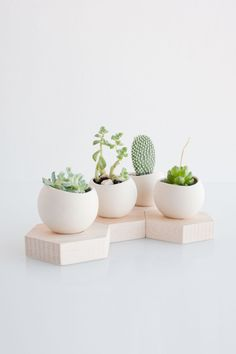 honey-kennedy-light-and-ladder-farrah-sit-planters-07