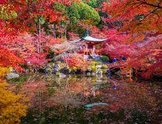 Templo Daigoji (Japón)