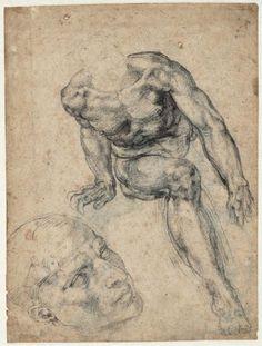 Michelangelo Buonarroti (1475 - 1564) (tekenaar) Titel Zittend mannelijk naakt; aparte studie van het hoofd