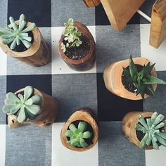 Image of Wooden Planters - Salvaged Wood