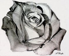 This is the exact art I took in for my rose tattoo :)