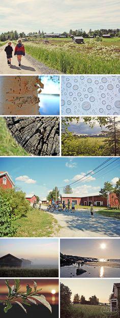 L U N D A G Å R D | inredning, familjeliv, byggnadsvård, lantliv, vintage, färg & form: Trädgård/Natur