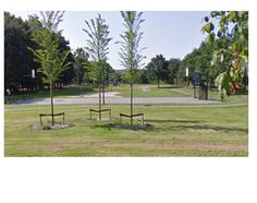 een openbare ruimte die lekker groen is en een voetbal veldje heeft voor kinderen zodat deze kunnen spelen in de wijk. Sander Kok