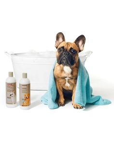 Try natural condition-specific grooming formulas. Tip: brush your pet before bathing to eliminate matting and tangles.