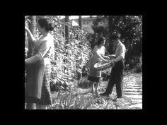 Pivot :: Blog -> Los espaguetis que crecen en los árboles http://pivoteandoblog.wordpress.com/2014/10/17/los-espaquetis-que-crecen-en-los-arboles/