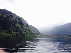 Parque Futangue, lago Ranco, Chile Chile, Around The Worlds, River, Outdoor, Park, Countries, Tourism, Cute, Outdoors