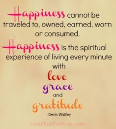 "*""Happiness Cannot Be Traveled To, Owned, Earned, Worn Or Consumed. Happiness Is The Spiritual Experience Of Living Every Minute With Love, Grace And Gratitude."" -"