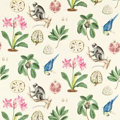 Sanderson Capuchins DVOY223273 (Chintz) fabric from the Voyage of Discovery collection, priced per metre. Made to measure conditions apply