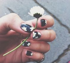 Cute Daisy Black Nails>>>>