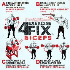 4 exercises for your bicep workout