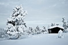 Hut in Norway - A smal hut in a pleasant and cold environment. Norway, Environment, Snow, Cold, Photography, Outdoor, Outdoors, Photograph, Fotografie