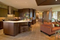 Open Floor Plan Homes  (don't like the modern look, just the openness)