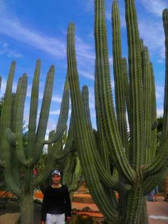 Island Gran Canaria