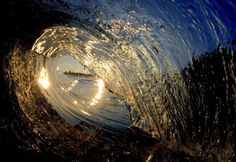 I need to learn to surf...and get a waterproof case for my camera