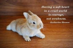 (08/10/14) #Quote #Wisdom