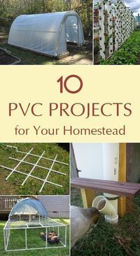 10 Wonderful PVC projects to update your homestead. 10 Wonderful PVC projects to update your homestead. Pvc Pipe Projects, Outdoor Projects, Garden Projects, Home Projects, Farm Projects, Backyard Projects, Welding Projects, Pallet Projects, Homestead Survival
