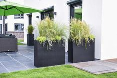 Learn how a real alternative to traditional privacy screens - front garden ideas - Find out how a real alternative to traditional privacy screens can be a real alternative to traditi - Café Exterior, Exterior Stairs, Bungalow Exterior, Cottage Exterior, Modern Exterior, Exterior Paint, Back Gardens, Outdoor Gardens, Patio Plants