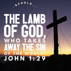 """Weekly Verse for January 15th! """"Behold, the Lamb of God, who takes away the sin of the world!"""" John 1:29 Photo Credit:Anna Noble Additional Readings for theSecond Sunday After Epiphan…"""