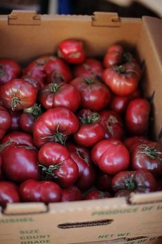 Heirloom tomatoes are in the farmers market right now. Heirloom Tomatoes, Fruit And Veg, Fruits And Vegetables, Fresh Fruit, A Well Traveled Woman, I Love Food, Farmers Market, Food Styling, Gastronomia