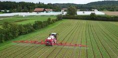 Massiver Pestizideinsatz in der Landwirtschaft belastet die Gewässer