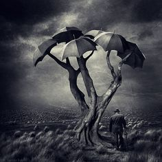 20 New Surreal Photo Manipulations by Sarolta Ban | DeMilked