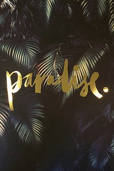 Para, para, paradise.