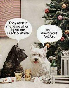 Chiens 'Whisky Black & White' - Publicité Vintage - 1970