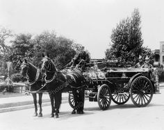 Fire Men On Horse Drawn Fire Wagon 1900s Old 8x10 Reprint Of Photo