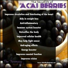The health benefits of acai berry and drinking acai berry juice. These berries are a superfood berry that have several benefits that include weight loss and anti-aging potentials! Acai Benefits, Benefits Of Berries, Juicing Benefits, Health Benefits, Acai Powder Benefits, Acai Recipes, Raw Food Recipes, Puerto Rico, Vegans