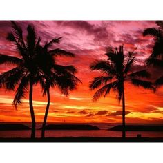 Hawaii ❤ liked on Polyvore featuring backgrounds, hawaii and sunset