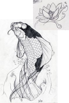 Butterfly Koi Fish | Koi Fish Tattoo Designs Sketch Collection 4