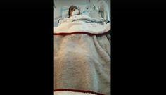 #Rare glimpse inside hospital room of brain dead Brampton woman - CityNews: CityNews Rare glimpse inside hospital room of brain dead…