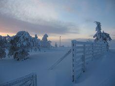 lapland by eem3li on Flickr.        Lapland, Finland.